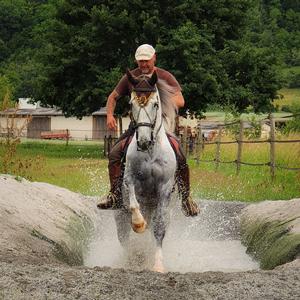 Working-Equitation Kurs